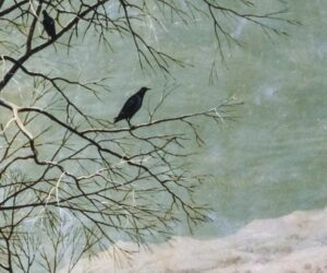 Front cover of 'Still' by Christopher Meredith showing two small black birds perched on a tree branch in the snow